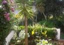 Vakantievilla Cal Albert,Tamariu,Costa Brava image-18