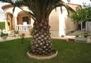 Villa Adalardo,Ametlla de Mar,Costa Dorada image-16
