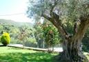 Villa Escada,Calonge,Costa Brava image-18