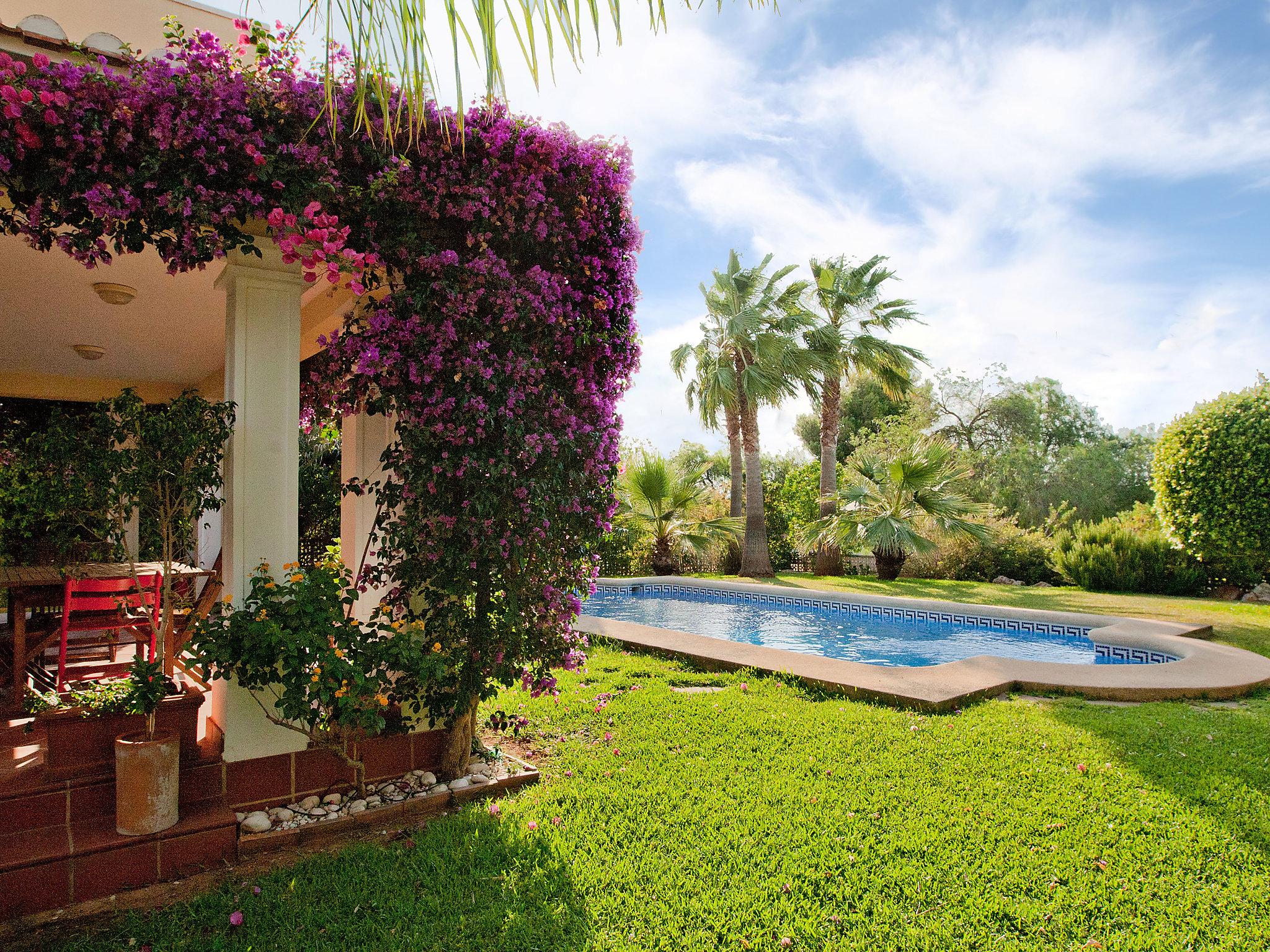 Villa Moncayo,Denia,Costa Blanca #2