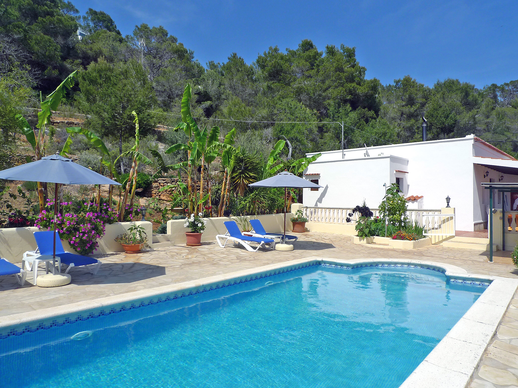 Villa Ibai,Sant Carles Peralta,Ibiza #1